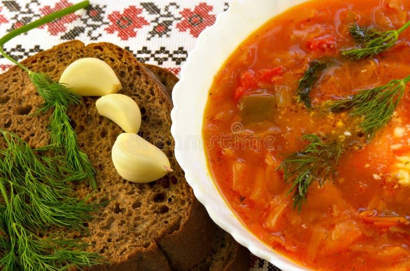 Borschtsch mit Schwarzbrot lizenzfreie stockfotos
