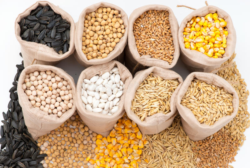 Borse con i chicchi di grano avena, orzo, grano, cereale, fagioli, piselli, soia, girasole fotografia stock libera da diritti