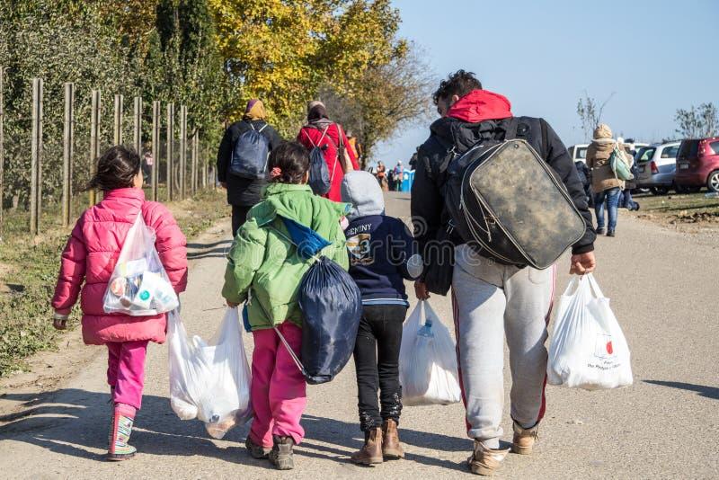 Borse pesanti di trasporto di camminata dei rifugiati sul confine della Croazia Serbia, fra le città di Bapska e Berkasovo sull'i fotografia stock