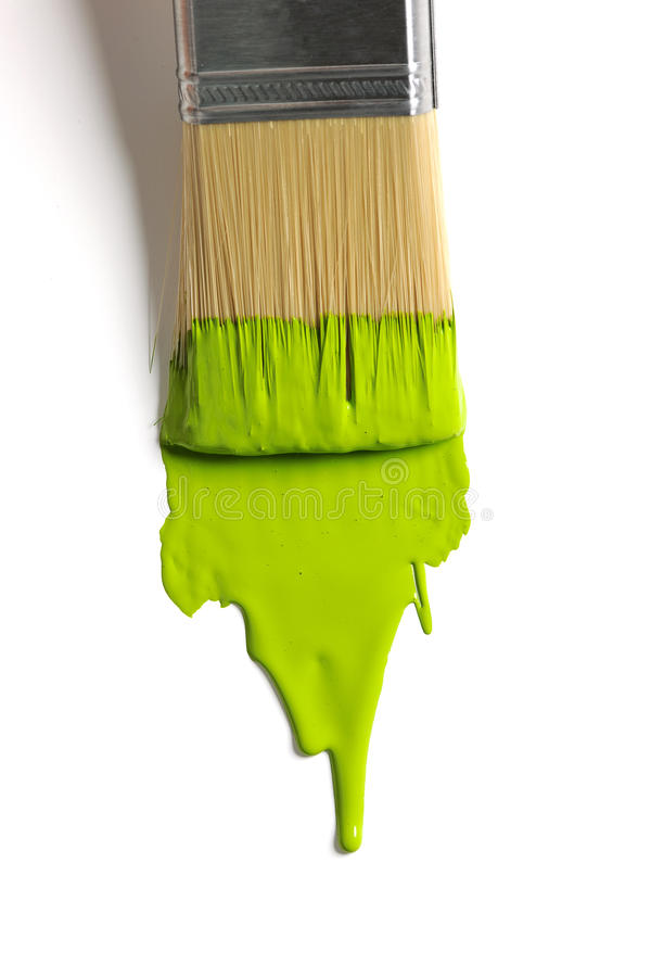 Borste med grön målarfärg royaltyfri bild