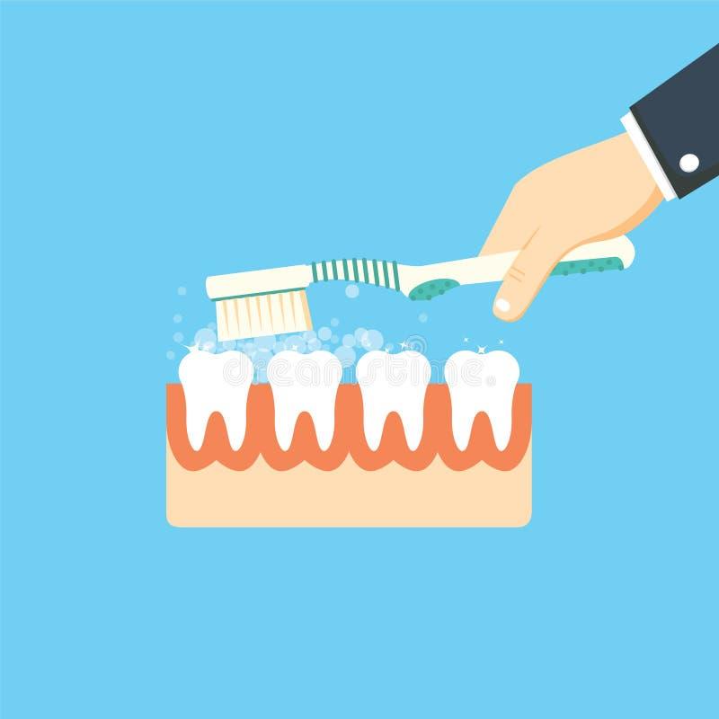 Borstelende Tanden In hand mens van de tandenborstelgreep Geïsoleerd over witte achtergrond vector illustratie