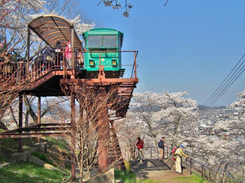 Bortgång för oidentifierad turist- och lutningsbil till och med tunnelen av den körsbärsröda blomningen (Sakura) arkivbilder
