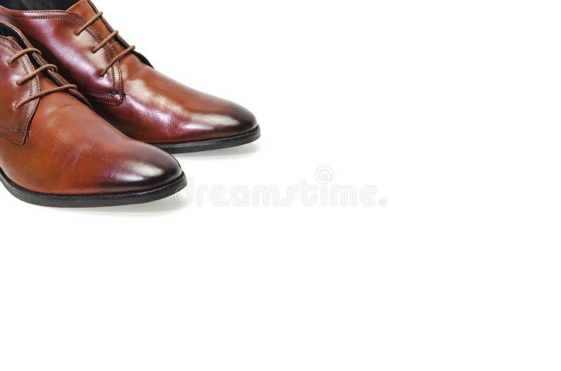 Borwn用皮革包盖在白色背景隔绝的人鞋子 侧视图 库存图片