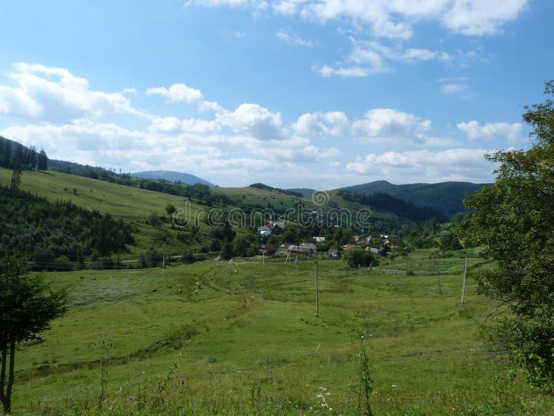Borzhava bergskedja av de ukrainska Carpathiansna i den Transcarpathian regionen ukraine Sommar 2016 arkivbilder