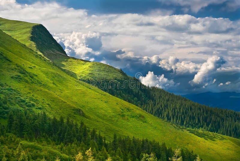 borzhavsky喀尔巴阡山脉的山土坎春天视图 乌克兰 免版税图库摄影