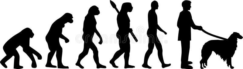 Borzoi evolution. Development with silhouette royalty free illustration