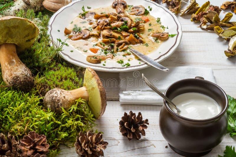 Bos champignonsoep en ingrediënten royalty-vrije stock foto's