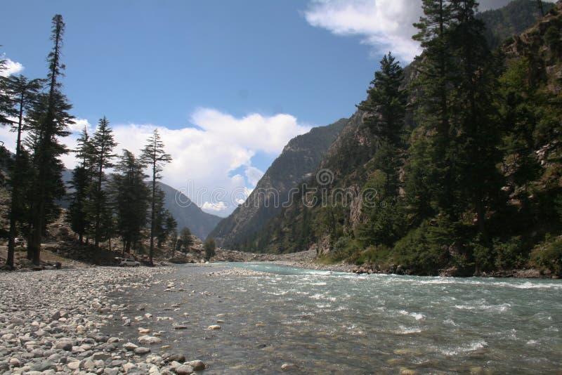Bos de bergenstenen van de rivierstroom stock afbeelding