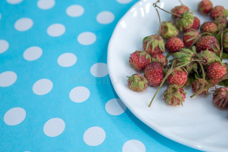 Bos de bessen van de zomer rode wilde zoete aardbeien macro als achtergrond royalty-vrije stock foto's