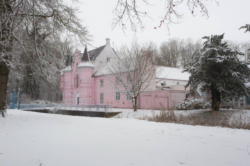 Bos in de winter met witte sneeuw en een roze kasteel stock afbeeldingen