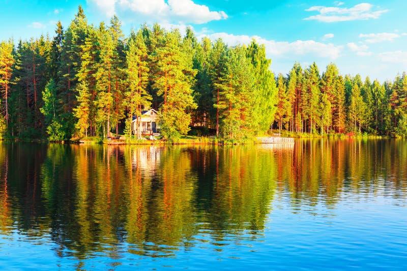 Bos en meerlandschap in Finland stock foto