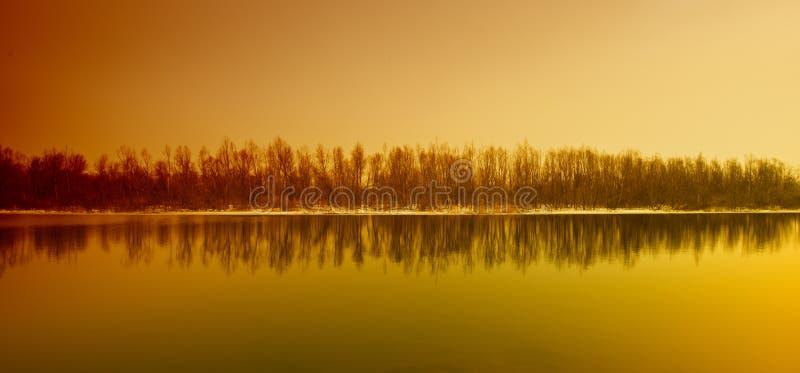 Bos en rivier stock fotografie