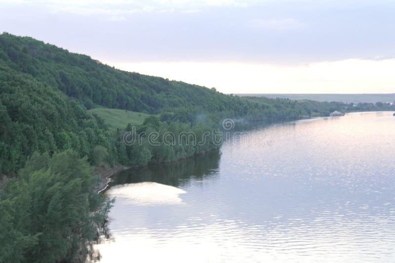 Bos en rivier royalty-vrije stock foto's