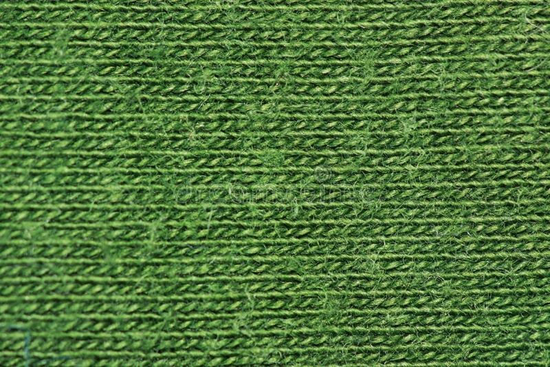 Bos groene katoenen vezels stock fotografie