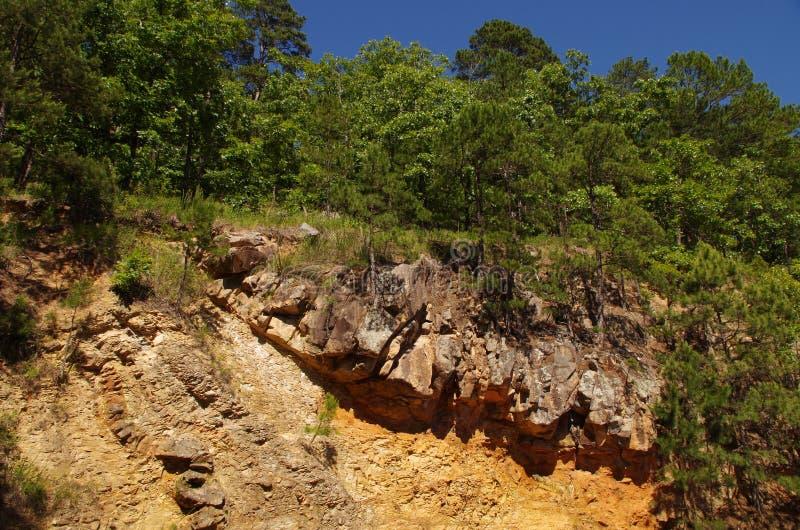 Bos in Heet de Lentes Nationaal Park, Arkansas, de V.S. stock afbeelding