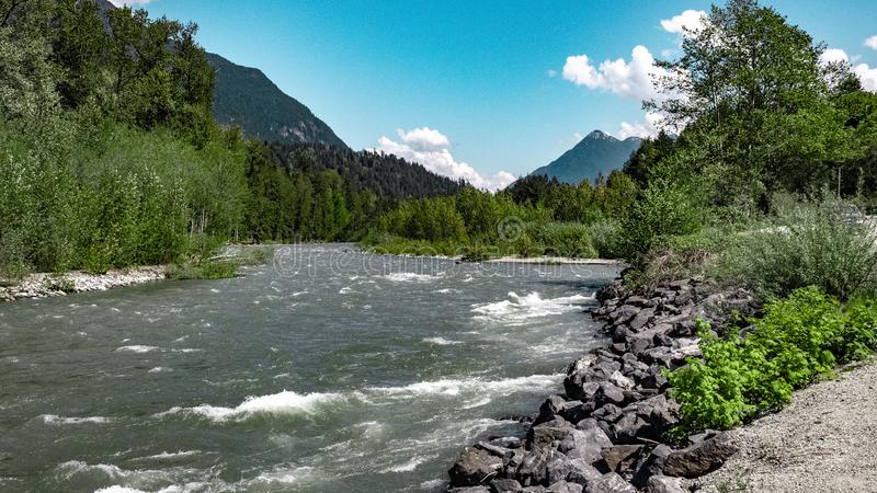 Bos het overzien rivierbank stock afbeeldingen