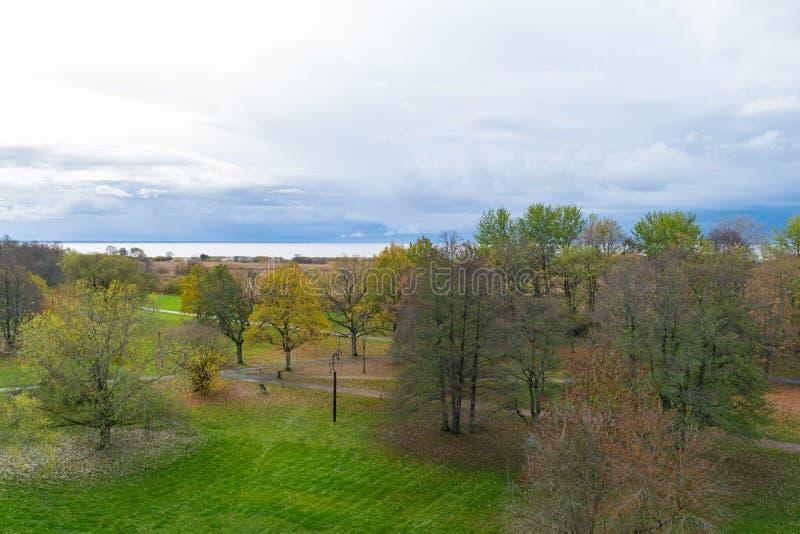 Bos met afgelegen het overzees van de herfstbomen Gele, rode en groene aard, hoge hoogste mening Luchthommelspruit met prachtige  stock foto