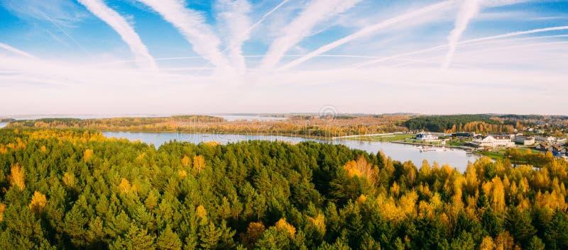 Bos met de herfst hierboven bomen in het overzees van Minsk Gele, rode en groene aard, hoge hoogste mening Luchthommelspruit met  royalty-vrije stock afbeeldingen