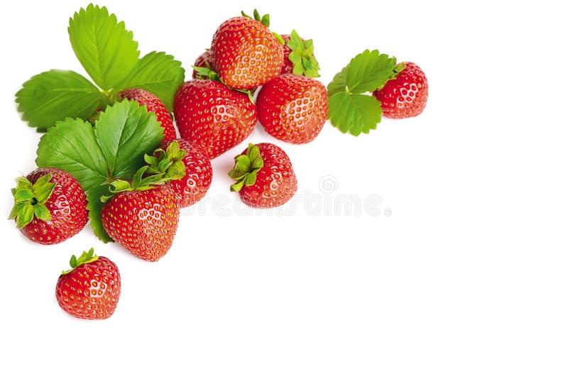 Bos van aardbeien royalty-vrije stock foto