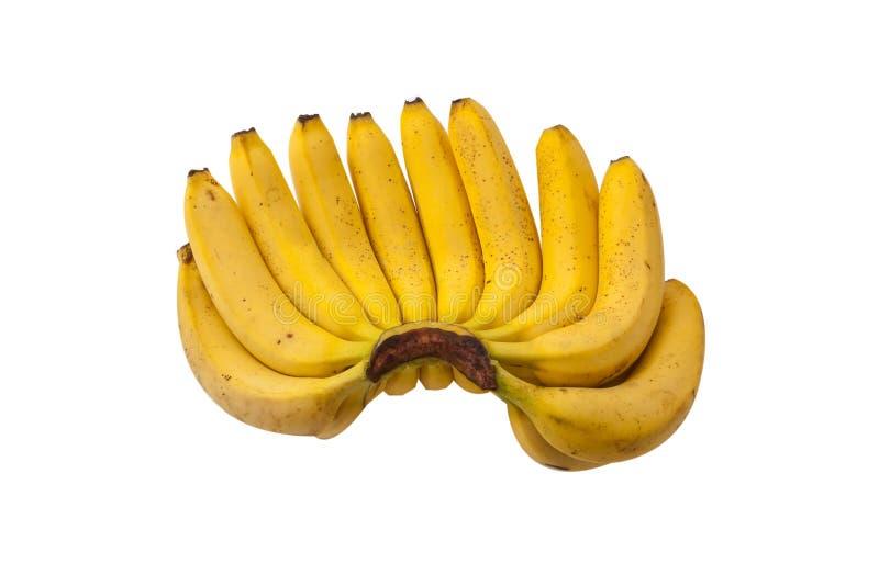 Bos van bananen royalty-vrije stock afbeeldingen