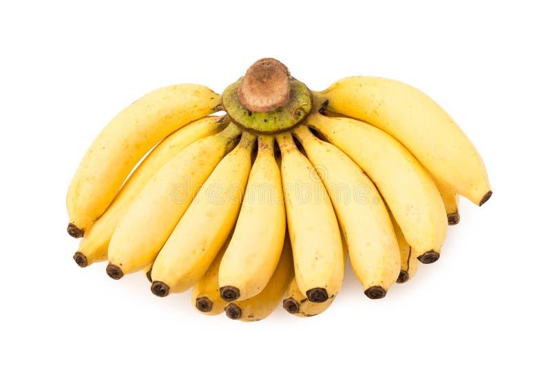 Bos van bananen royalty-vrije stock foto's