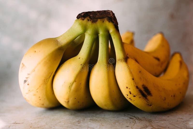 Bos van bananen Sluit omhoog mening van verse en organische bananen klaar te eten royalty-vrije stock afbeelding