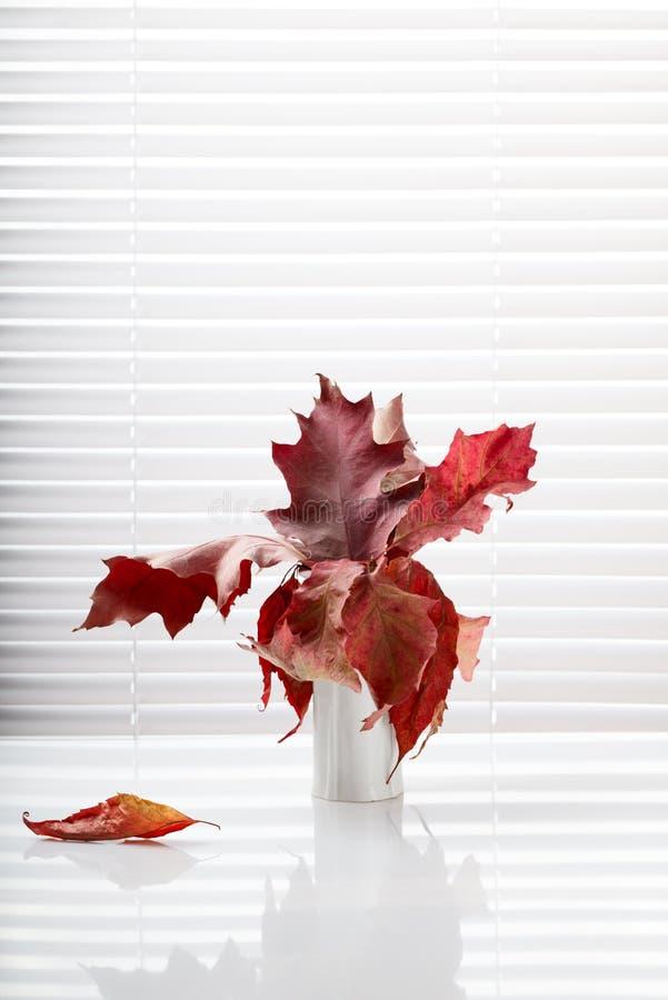 Bos van de herfst de eiken bladeren in vaas royalty-vrije stock foto