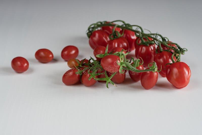 Bos van de Tomaten van de Kers royalty-vrije stock fotografie