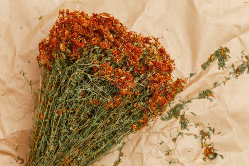 Bos van droge bloemen, Hypericum, tutsan op gerimpeld document stock afbeeldingen