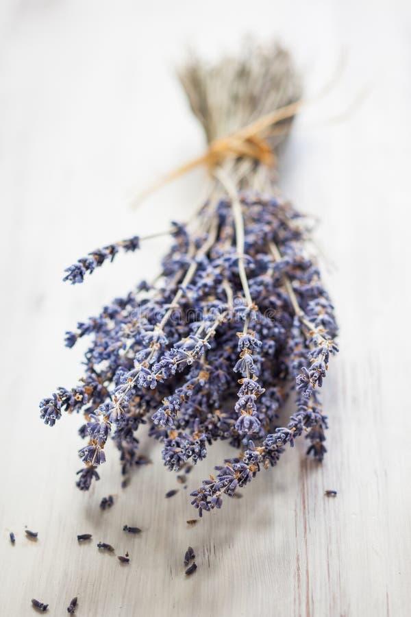 Bos van droge lavendelbloemen stock foto's