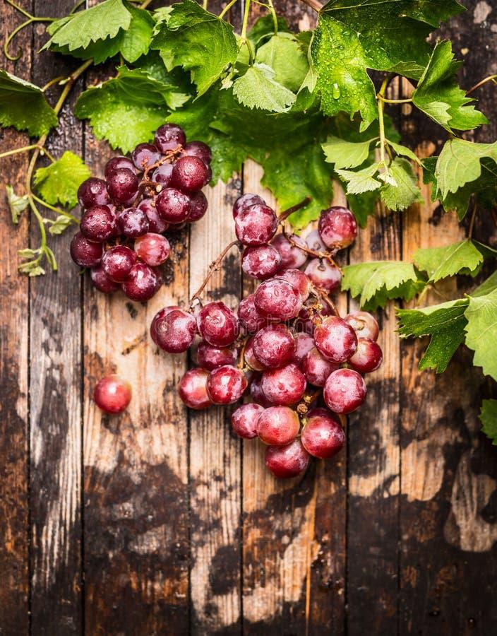 Bos van druiven met wijnstok en groene bladeren op rustieke houten achtergrond, hoogste mening stock afbeelding