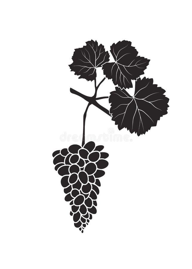 Bos van druiven op een tak met bladeren op witte backgr worden geïsoleerd die stock illustratie