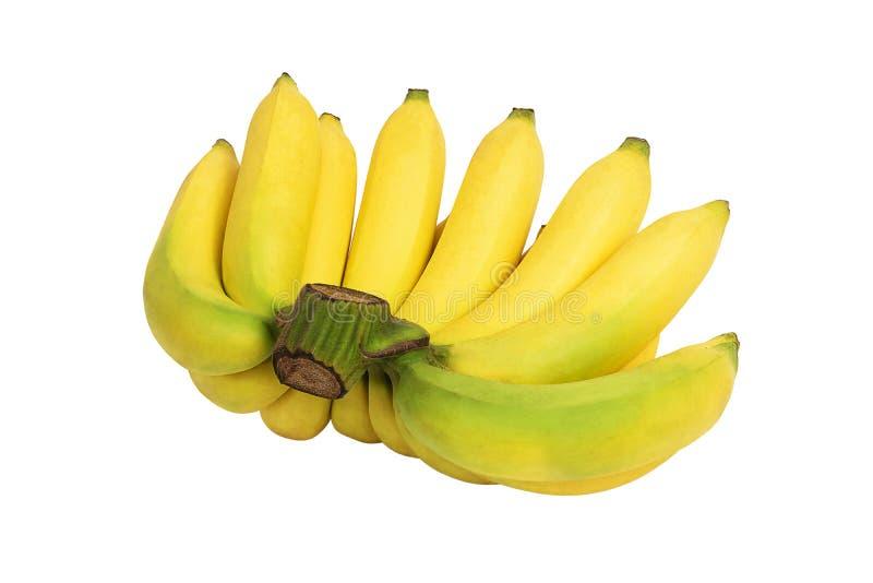 Bos van gele die bananen op witte achtergrond worden geïsoleerd royalty-vrije stock fotografie