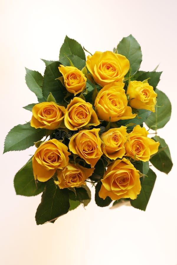 bos van gele rozen royalty-vrije stock foto's