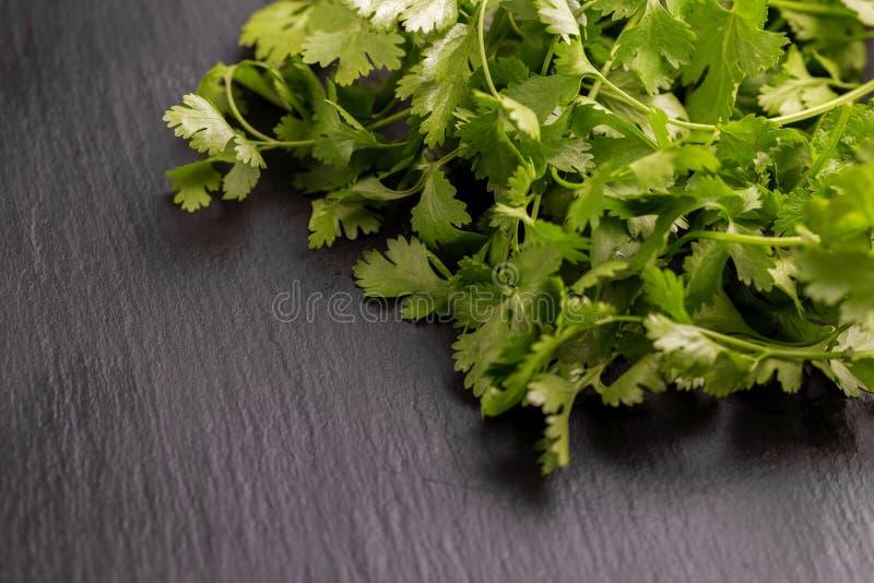 Bos van groene verse organische koriander op grijze leibackgrou stock foto
