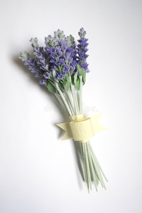 Bos van lavendel stock fotografie
