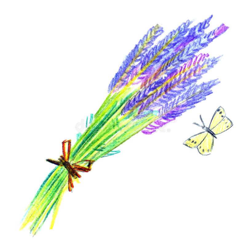 Bos van lavendelbloemen royalty-vrije illustratie