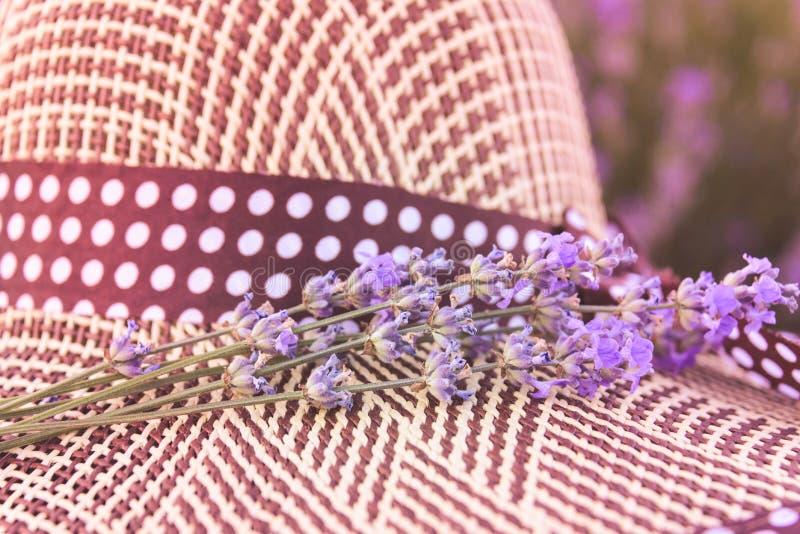 Bos van lavendelbloemen en strohoed Romantisch de zomerconcept Aromatherapy Zonsondergang over een de zomer purpere lavendel stock fotografie
