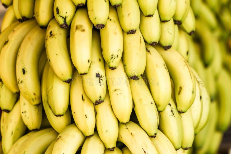 Bos van Rijpe Bananen in een Lokale Markt royalty-vrije stock foto's