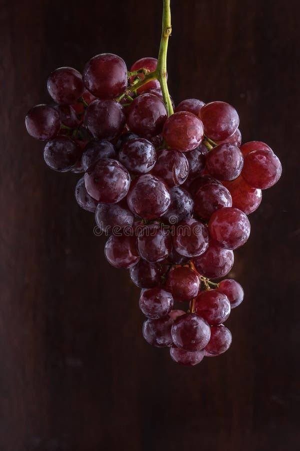 Bos van rode druif royalty-vrije stock afbeeldingen