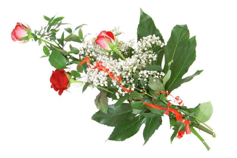 Bos van rode rozen stock afbeelding