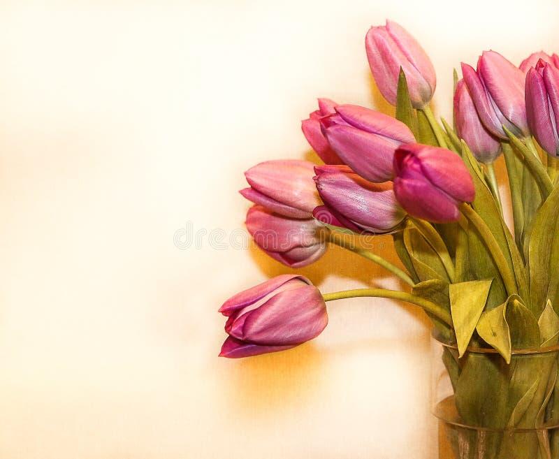 Bos van roze tulpen stock foto's