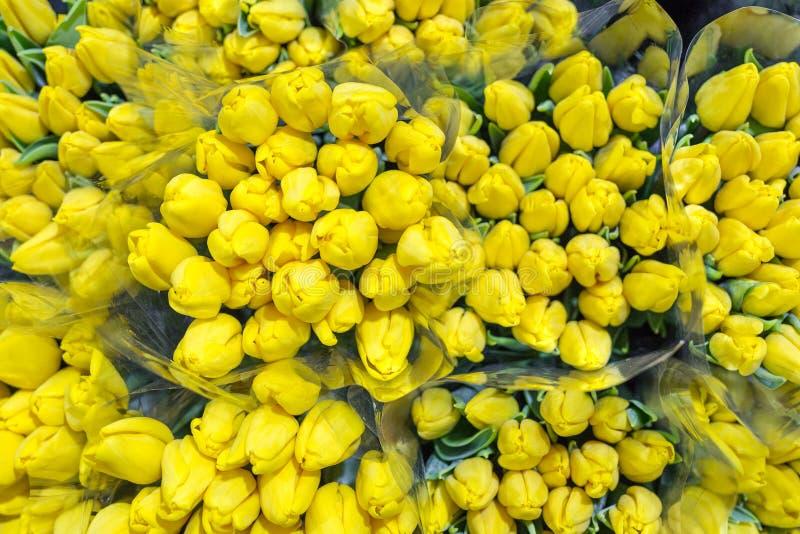 Bos van vele mooie verse gele tulpen De opslag van de in het groot en kleinhandelsbloem Bloemwinkel of markt Het concept van de b stock afbeelding