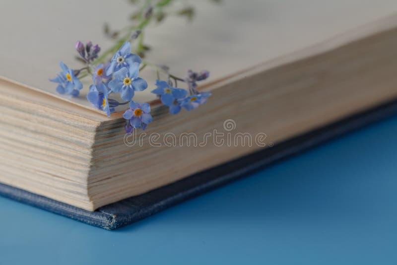 Bos van vergeet-mij-nietjesbloemen en zeer oud boek stock fotografie