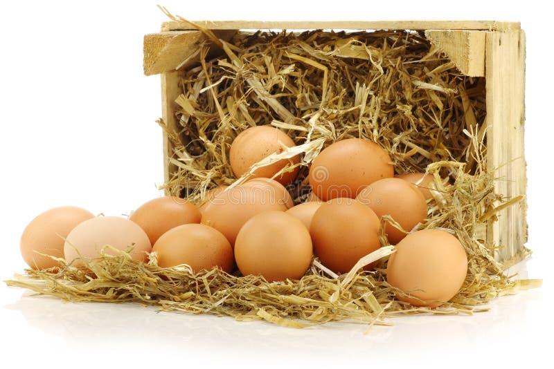 Bos van verse bruine eieren royalty-vrije stock afbeeldingen