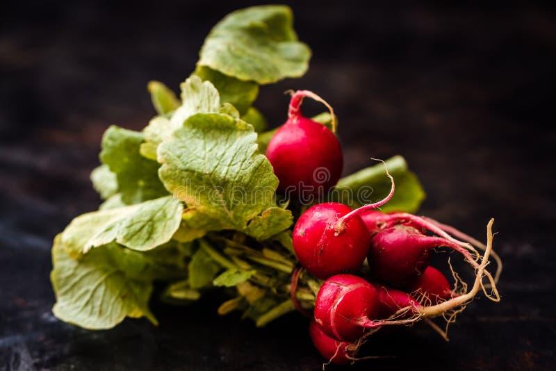 Bos van Verse Rode Radijs met Groene Bladeren op Donkere Achtergrond stock fotografie