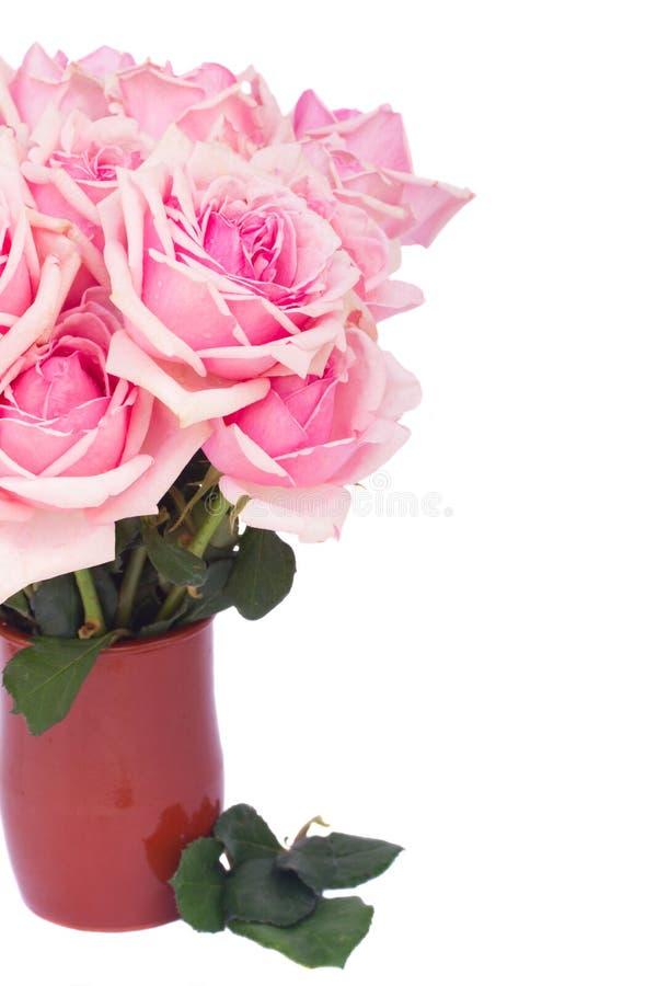 Bos van verse roze rozen royalty-vrije stock afbeeldingen