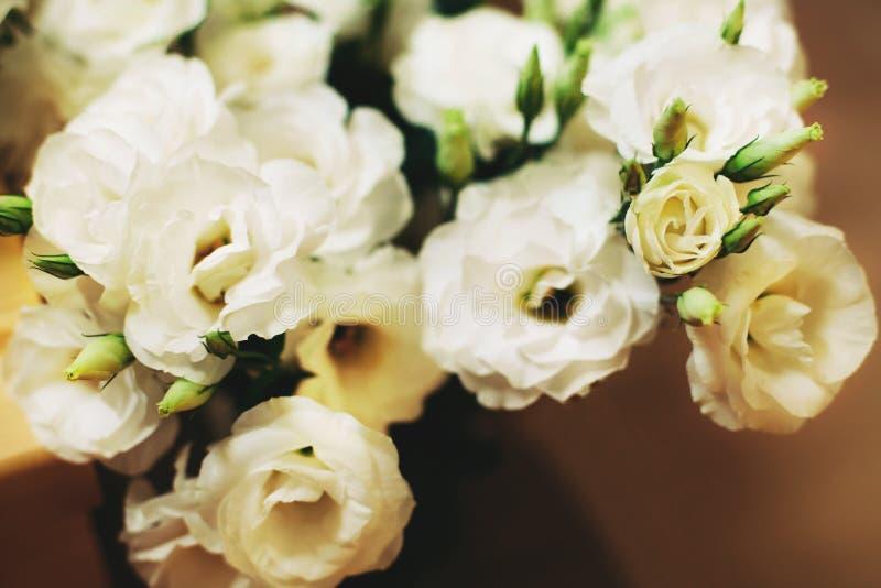 Bos van witte eustomabloemen royalty-vrije stock foto's