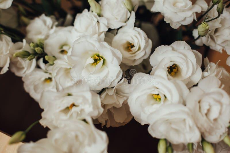 Bos van witte eustomabloemen stock foto's