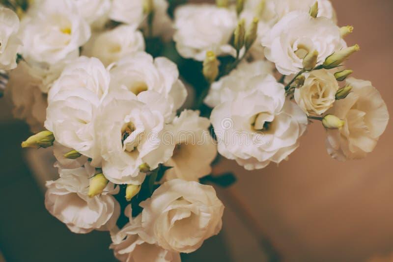 Bos van witte eustomabloemen royalty-vrije stock foto